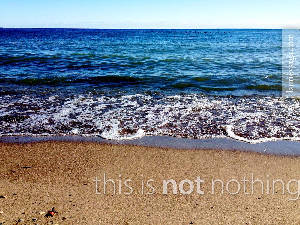 Lake Ontario Laurie Varga Not Nothing
