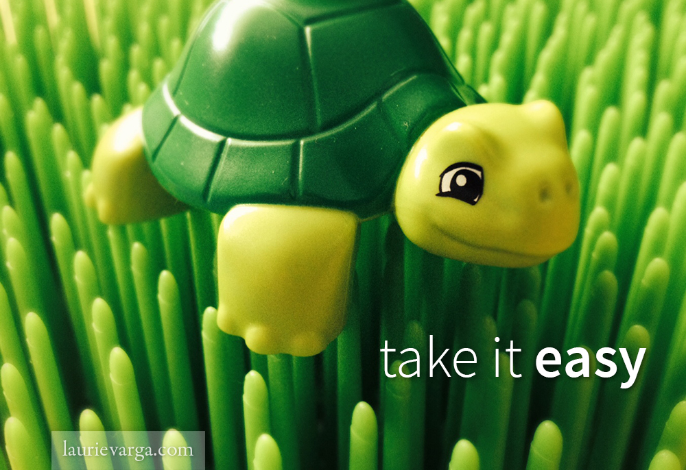 take it easy, slow, turtle