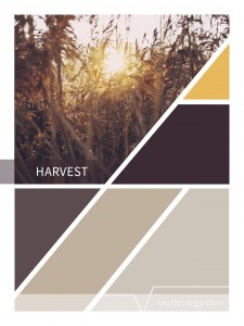 Color Palettes of the week: Harvest & Come on In